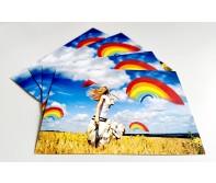 Postkarten-Set (10 Stück) Fang' dir einen Regenbogen